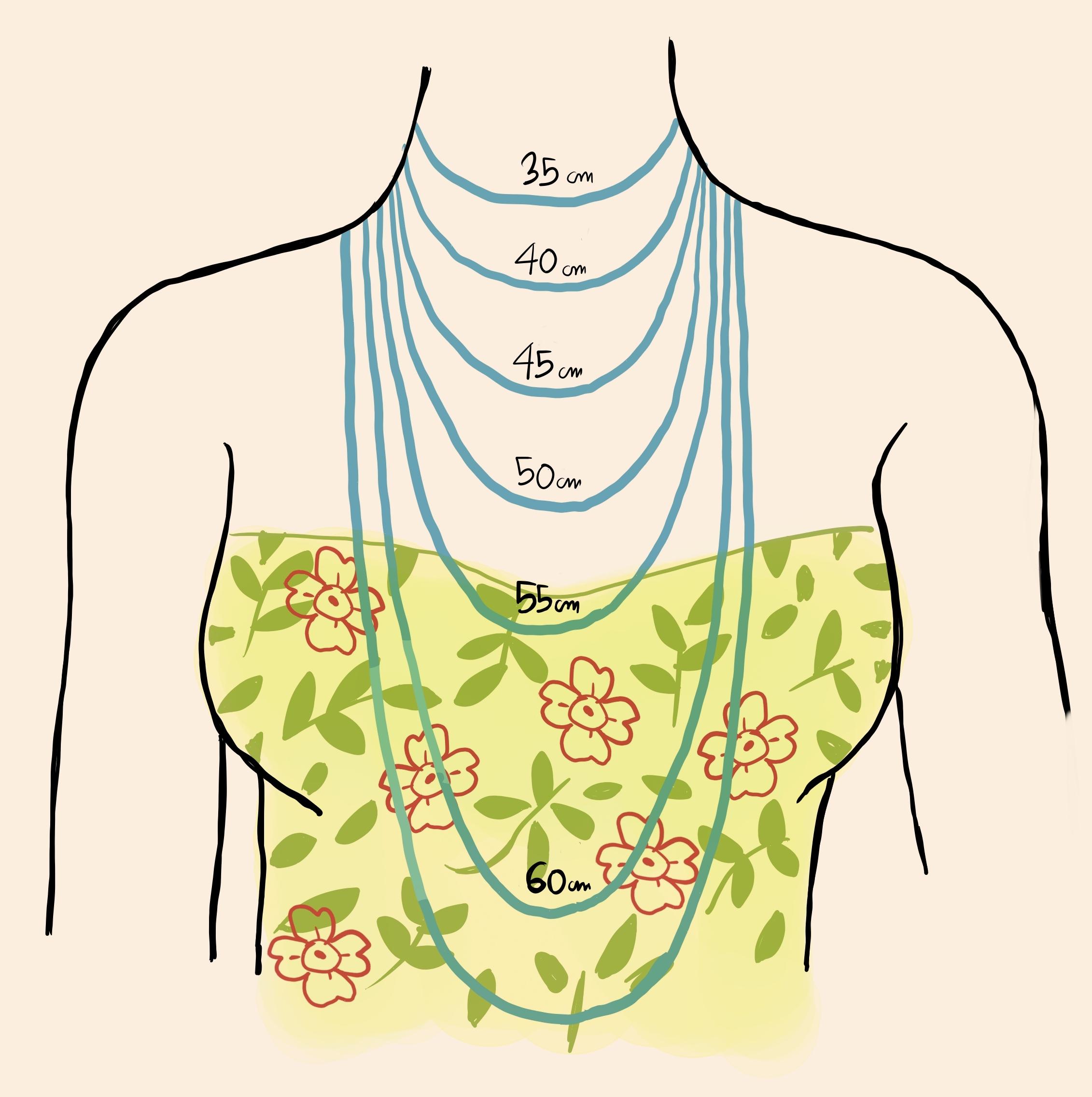Distintas medidas de collar y su posición en el cuerpo.